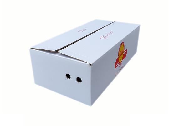 San kartonska kutija